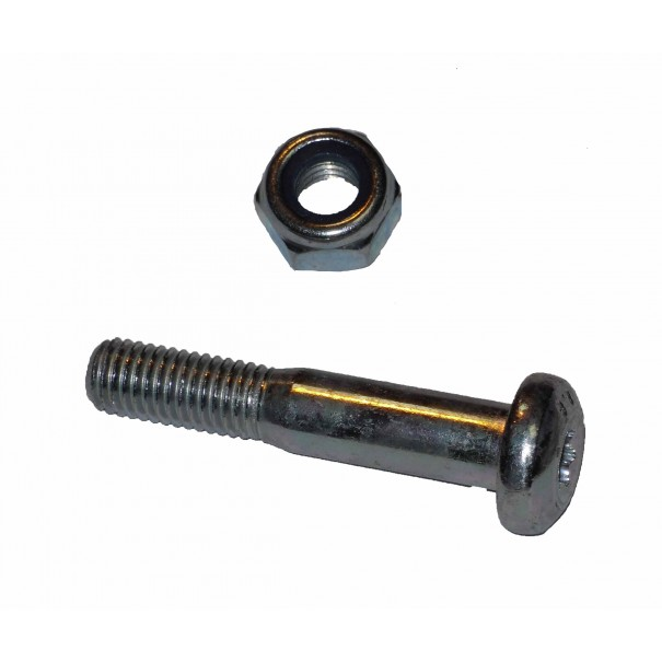 Ford Focus Suspension Pinch Bolts & Nuts 10 Pack - CPB6007